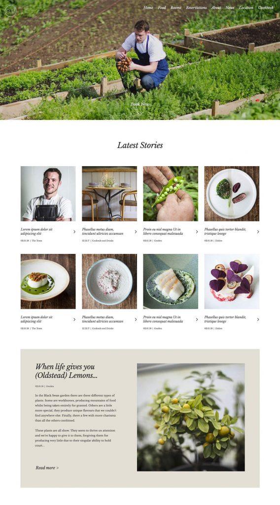 Black Swan Site Designs - Blog Overview Page Design
