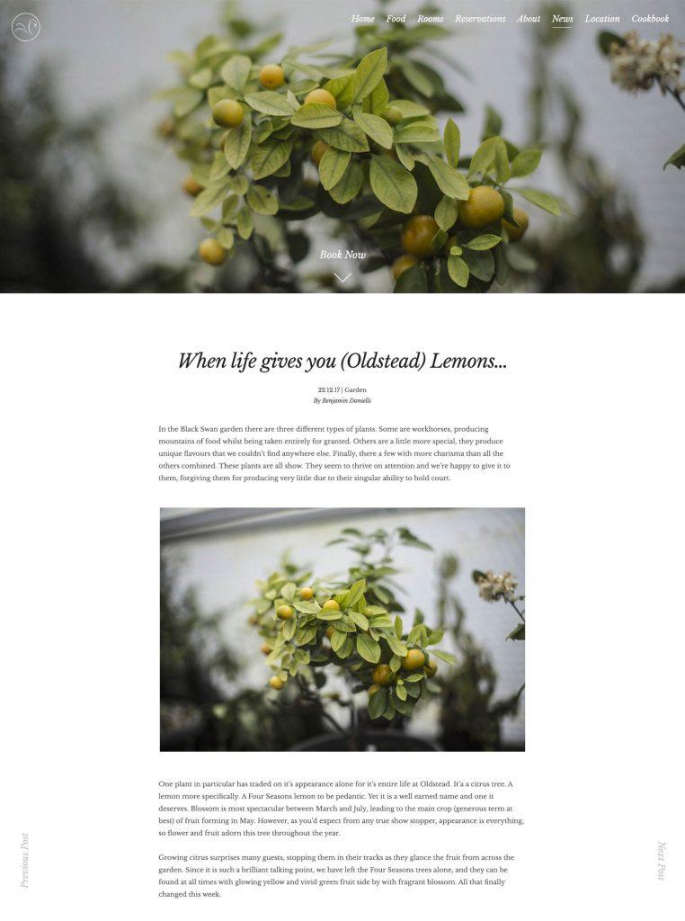 Black Swan Site Designs - Single Blog Page Design